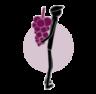 Vinology Blog